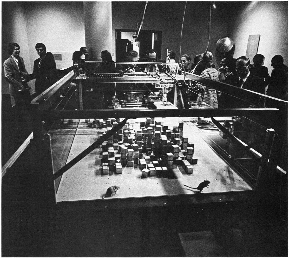 The 1970 experiment SEEK by the Architecture Machine Group. Photo from the catalog of the exhibition SOFTWARE at the New York Jewish Museum.