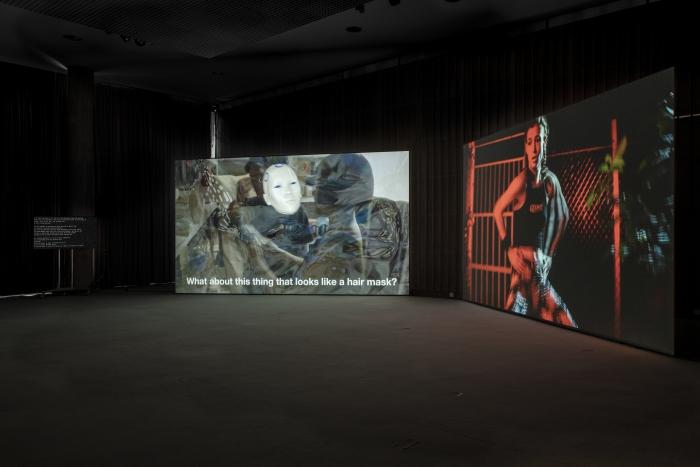 Molecular Sex by Johanna Bruckner in the exhibition The Eternal Network